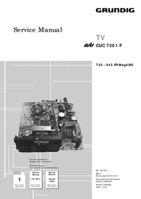 Suplemento Manual de servicio Grundig T 55 – 843 FR MegASIS