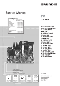 Manuale di servizio Supplemento Grundig WIEN 100 SE 6320 IDTV/LOG